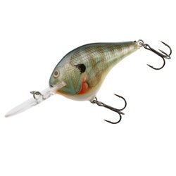 Rapala® DT10 Lure