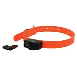 SportDOG Brand® NoBark 6 Electronic Dog Collar