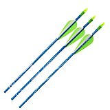 Carbon Express® Thunder Express II Fiberglass Arrows 3-Pack