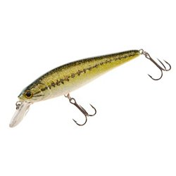 H2O XPRESS™ Floating Jerk Bait