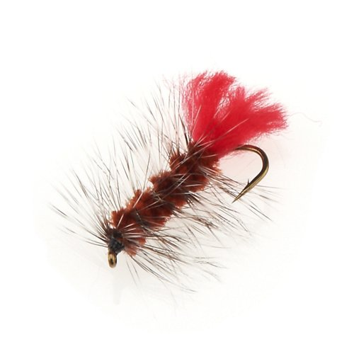 Superfly Wooly Worm 0.75 in Flies 2-Pack