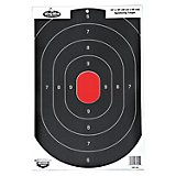 Birchwood Casey® Dirty Bird® Silhouette Targets 8-Pack