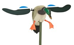 MOJO Outdoors™ Baby MOJO 3-D Drake Decoy