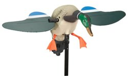 MOJO Outdoors™ Mallard 2010 Drake Decoy