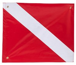 Airhead Diver Down Flag