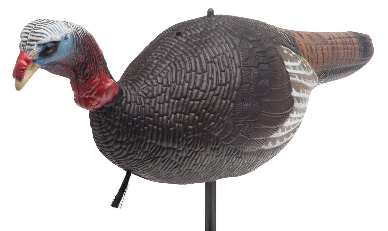 Redhead turkey decoy