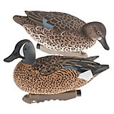 Game Winner® Carver's Edge Series 3-D Blue-Winged Teal Duck Decoys 6-Pack