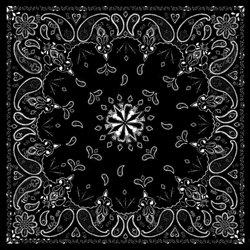 ZANHeadgear Black Paisley Premium Bandanna
