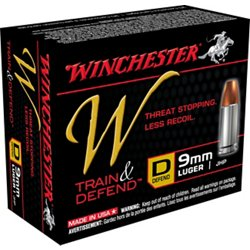 Train and Defend 9mm Luger 147-Grain Centerfire JHP Pistol Ammunition