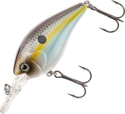 H2O XPRESS™ Crank M Medium Diving Crankbait