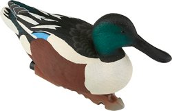 Game Winner® Carver's Edge Series Shoveler Duck Decoys 6-Pack