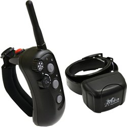 D. T. Systems R.A.P.T. 1400 Remote Training Collar