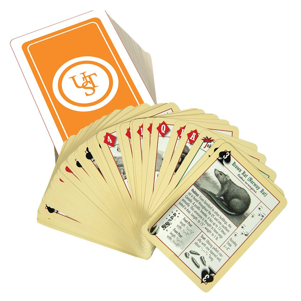 Ultimate Survival Tech Waterproof Survival Playing Cards