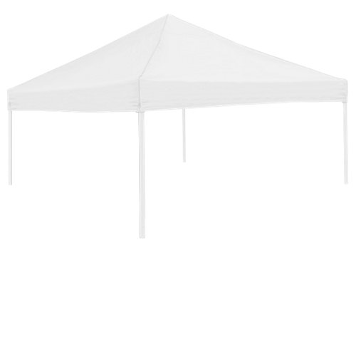 Logo University of Iowa Tent Side Panel