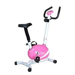 P8200 Magnetic Upright Exercise Bike