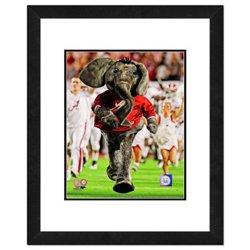 "Photo File University of Alabama 8"" x 10"" Mascot Photo"