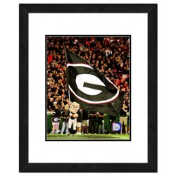 "Photo File University of Georgia 2008 Mascot 11"" x 14"" Double Matted and Framed Photo"