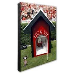 "Photo File University of Georgia 20"" x 24"" Mascot Stretched Canvas Photo"