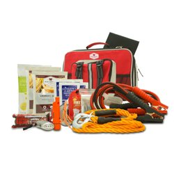 Wise Company All-in-One Auto Kit