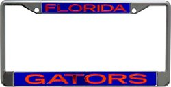 Stockdale University of Florida License Plate Frame