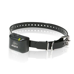 Dogtra YS300 No-Bark Collar