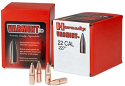 Hornady InterLock .22 Caliber Soft-Point Ammunition