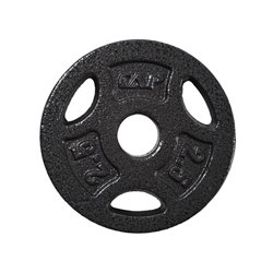 CAP Barbell 2.5 lb. Regular Grip Plate