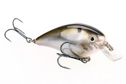 "Strike King KVD 1.5 3"" Crankbait"