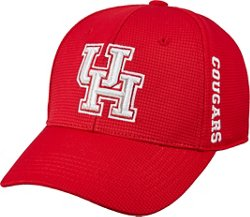 Top of the World Houston Cougars