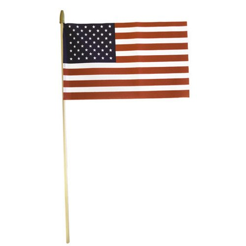 Independence Flag 8' x 12' Handheld American Flag