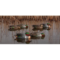 Avian-X Duck Decoys