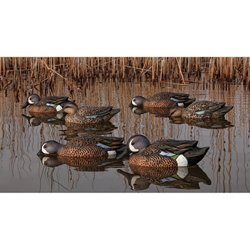 Topflight Blue-Winged Teal Decoys Set