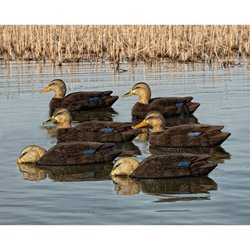 Topflight Black Duck Decoys 6-Pack