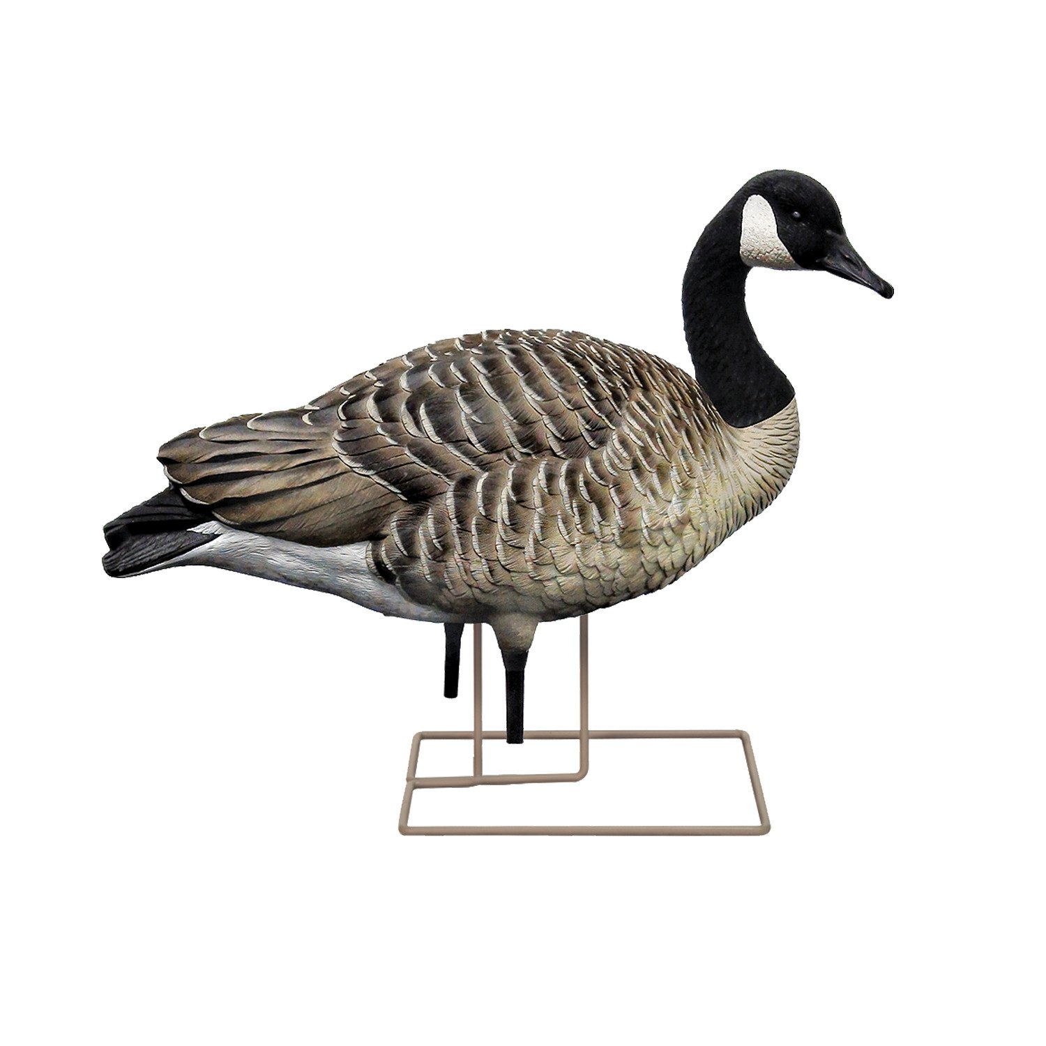 Avian-X AXP Painted Honkers Fusion Goose Decoys 6-Pack - view number 2