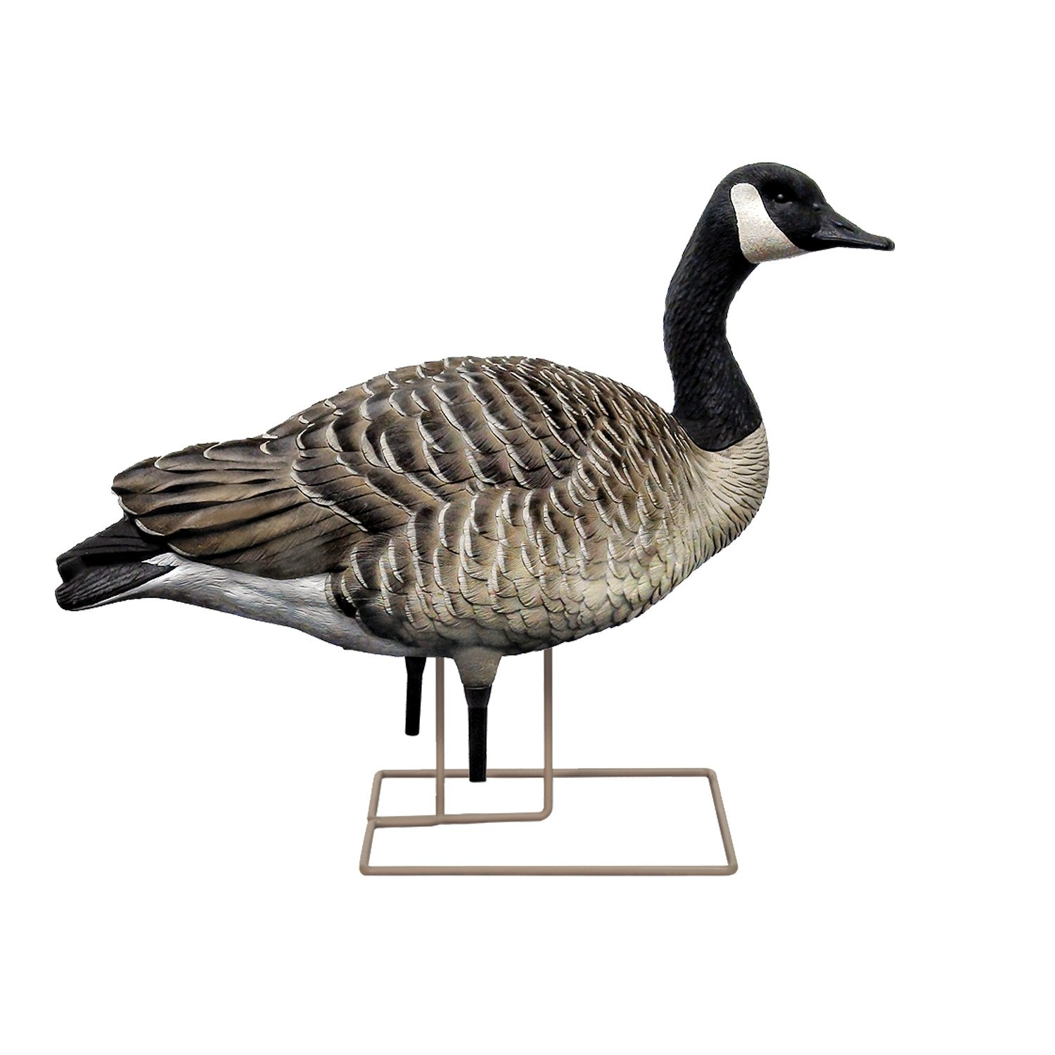 Avian-X AXP Painted Honkers Fusion Goose Decoys 6-Pack - view number 1