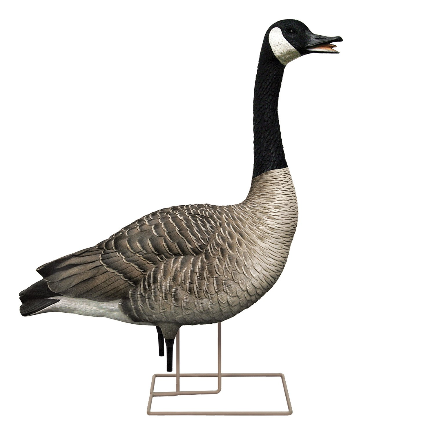 Avian-X AXP Painted Honkers Fusion Goose Decoys 6-Pack - view number 7