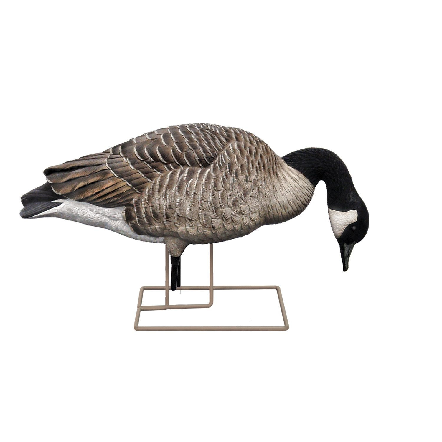 Avian-X AXP Painted Honkers Fusion Goose Decoys 6-Pack - view number 5