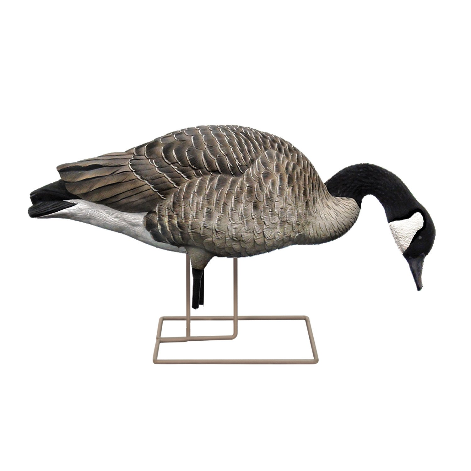 Avian-X AXP Painted Honkers Fusion Goose Decoys 6-Pack - view number 4