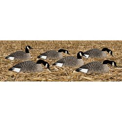 Painted Honker Shell Geese Decoys 6-Pack