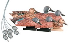 Greenhead Gear® Pro-Grade 3-D Pre-Rigged Blue-Winged Teal Decoys 6-Pack
