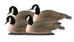 Greenhead Gear® Pro-Grade 3-D Honker Floater Goose Decoys 4-Pack