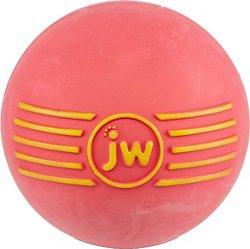 JW Pet® iSqueak Ball Dog Toy