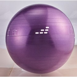 55 cm Weighted Stability Ball