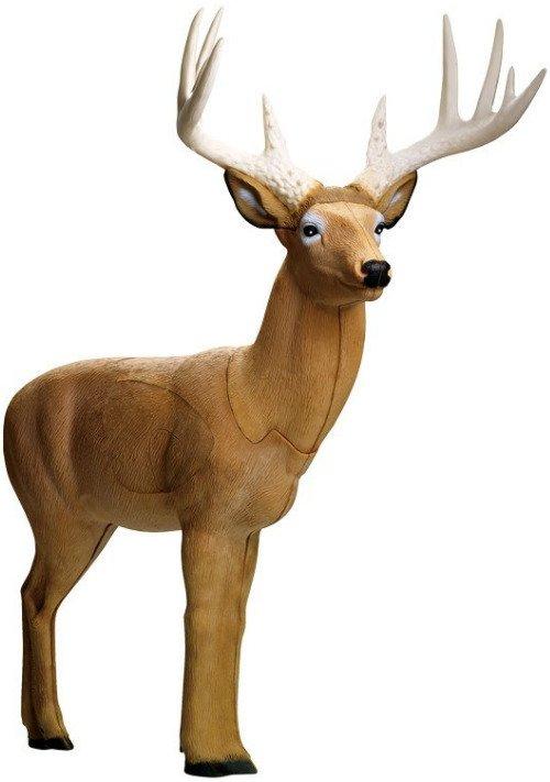 Rinehart Broadhead Booner Buck Archery Target - Archery, Targets at Academy Sports thumbnail