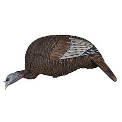 Thunder Chick 3-D Feeder Turkey Decoy