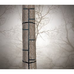 Treestands Amp Blinds Hunting Treestands And Ladder Stands