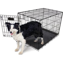 30 in Home Training Wire Kennel