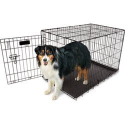 36 in Home Training Wire Kennel