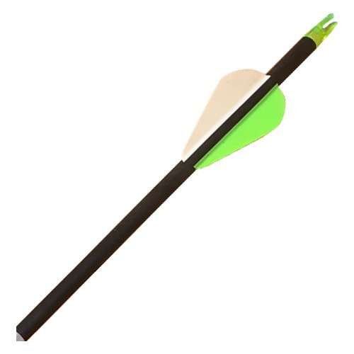 Carbon Express Adrenaline 250 Arrows 6-Pack