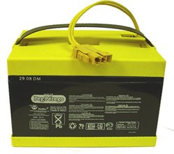 Peg Perego 24 V Battery